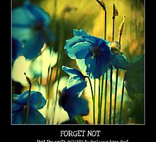Forget Not by 3faeries