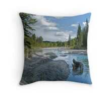 Does it get any better than this? Throw Pillow