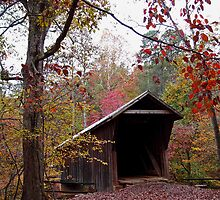 Bunker Hill Covered Bridge by Hope Ledebur