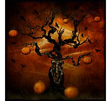 The Halloween Tree Photographic Print
