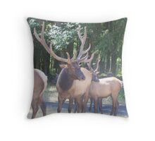 SANTA IS GETTING HIS REINDEER READY FOR CHRISTMAS EVE  Throw Pillow