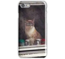 15 Minutes of Fame iPhone Case/Skin