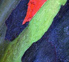 Caribbean Bark Serie #2 by Haydee  Yordan