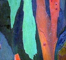 Caribbean Bark Serie #3 by Haydee  Yordan