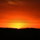 Sierra Sunset #2 by NancyC