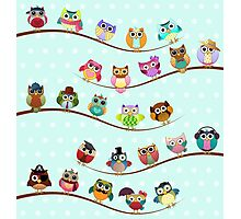 Cute Owls on Branch Photographic Print