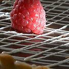 Raspberry pie capped with chocolate h by Stefan Bau