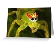 Green Jumping Spider Greeting Card