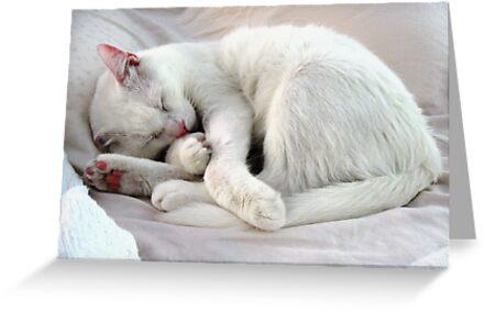 White as a Sheet by meibiseiya