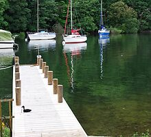 Wooden jetty at Windermere Lake by 29Breizh33