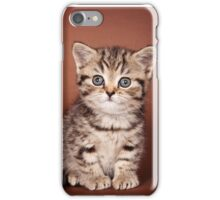 Fluffy tabby kitten iPhone Case/Skin