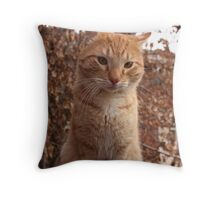 Beautiful Magestic Orange Cat with leaves behind Throw Pillow