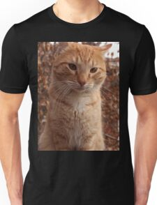 Beautiful Magestic Orange Cat with leaves behind Unisex T-Shirt