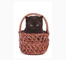 Cute black kitten in a basket Kids Clothes