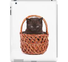 Cute black kitten in a basket iPad Case/Skin