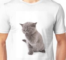 Funny gray kitten Unisex T-Shirt