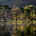 Landscape,Buttermere,Lake District,England,UK by Peter  Downing