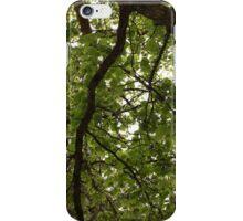 Vivid Green summer tree leaves. iPhone Case/Skin