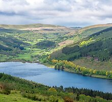 The Talybont Valley Brecon Beacons by Nick Jenkins