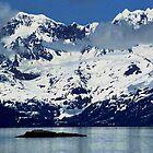 Alaska Glacier Bay National Park by Peter  Downing
