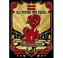 ALL PONIES ARE EQUAL Photographic Print