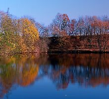 Indian summer reflections at the pond | waterscape photography by Patrick Jobst