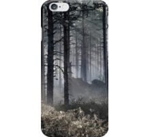 22.5.2015: Spring Morning in Pine Tree Forest iPhone Case/Skin