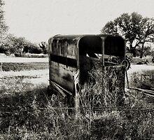 I Have Seen Better Days  2  ( BoneYard Series ) by Carla Jensen