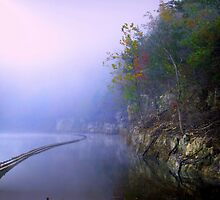 The Guardrail by BransonPhotos