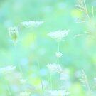 Summer Mist by Robin Webster