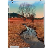 A stream, dry grass, reflections and trees | waterscape photography iPad Case/Skin