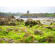 ballybunion castle algae covered rocks Photographic Print