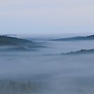 Fog Lifting by Tracy Faught