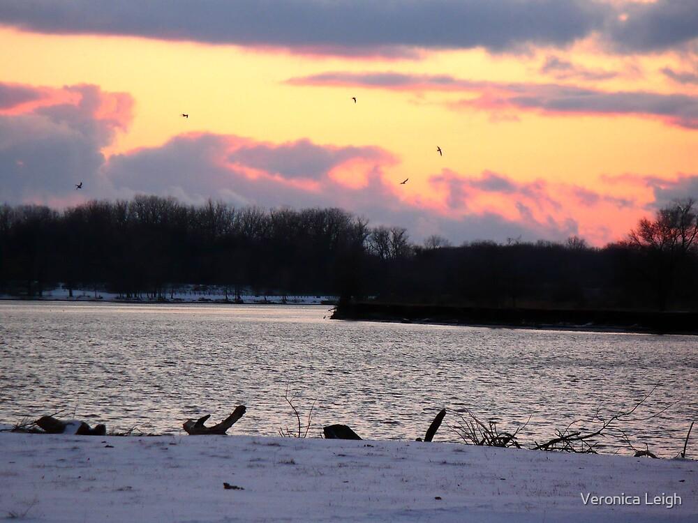 Winter River by Veronica Schultz