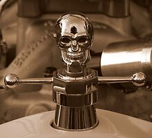 Vintage Skull Power by artisandelimage