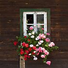 Farmhouse Window by Christine Wilson