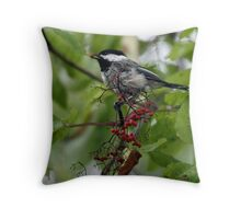 Black-Capped Chickadee (2010 Calendar Dec) Throw Pillow