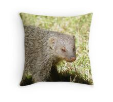 banded mongoose Throw Pillow