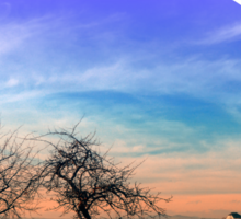 Trees, sunset, clouds, panorama and village | landscape photography Sticker