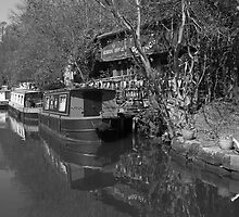 HOME ON THE CANAL by andysax