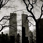UrbanNature by SplatterPics