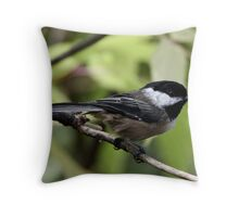 Black-Capped Chickadee (2010 Calendar May) Throw Pillow