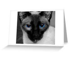 Baby's Got Blue Eyes Greeting Card