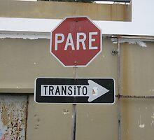 Pare...Transito by SplatterPics