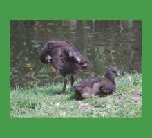 Moorhen chicks Kids Tee