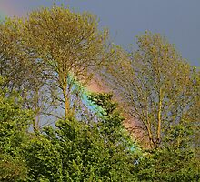 Rainbow in Somerset, United Kingdom by rumisw