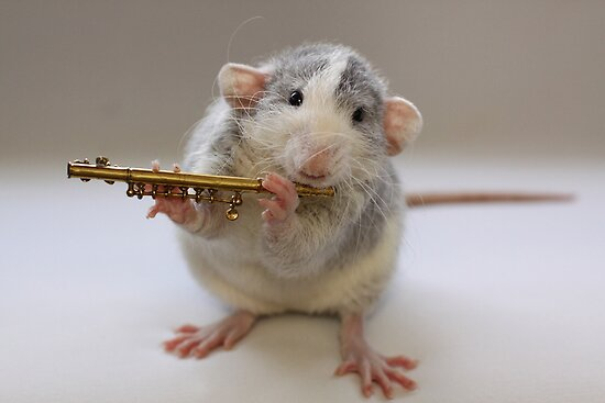 I really can play :) by Ellen van Deelen