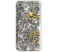 lichen rock iPhone Case/Skin
