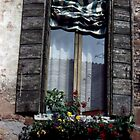 A window in Venice II by Sandro Rossi