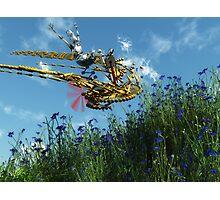 Robort's Flying Machine Photographic Print